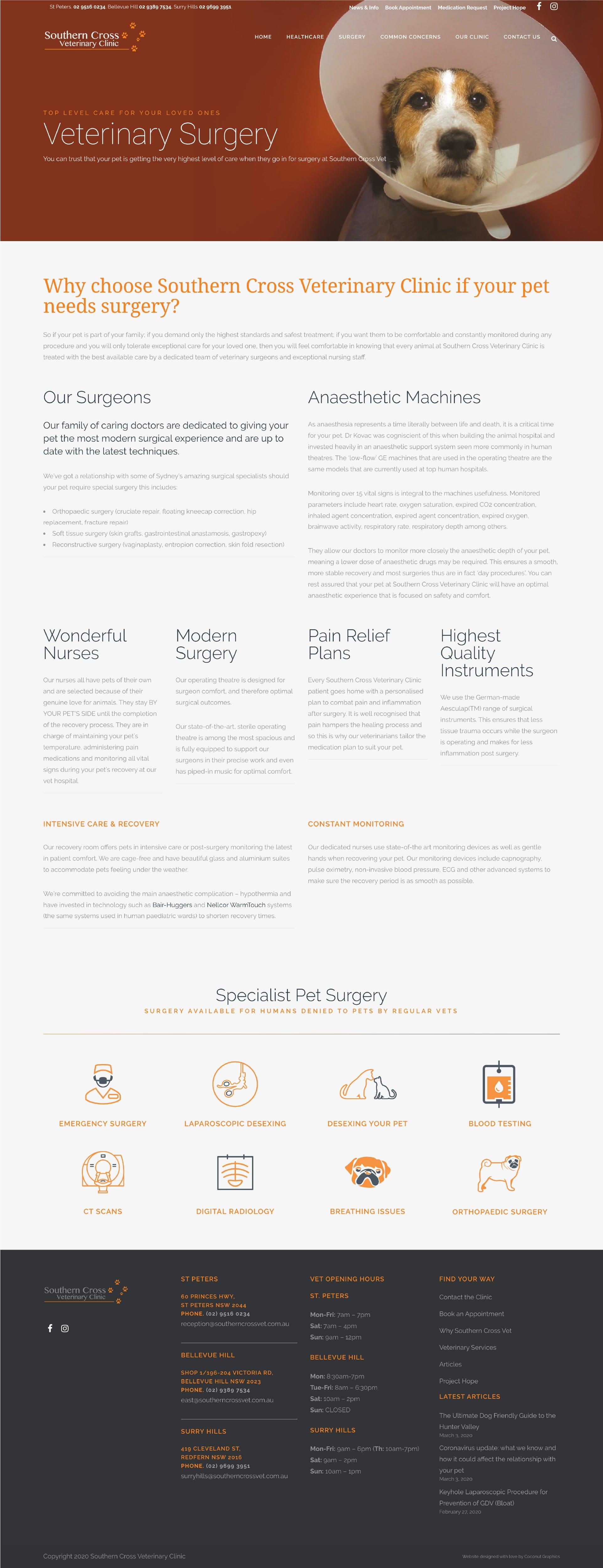 Casestudy - Southern Cross Vet Surgery Website Design